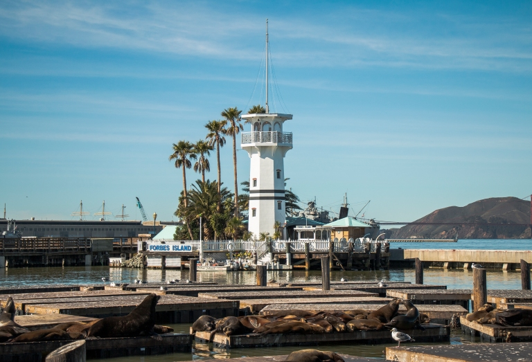 fishermans-wharf-tower-sky-seal-san-francisco